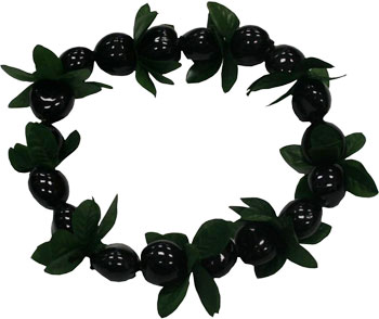 WHOLESALE HAWAIIAN LEIS - 1-888-534-7644 HAWAIIAN LUAU SUPPLIER