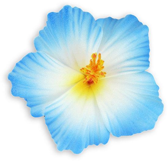 White Blue Small Hibiscus Flower Hair Clip Shaka Time