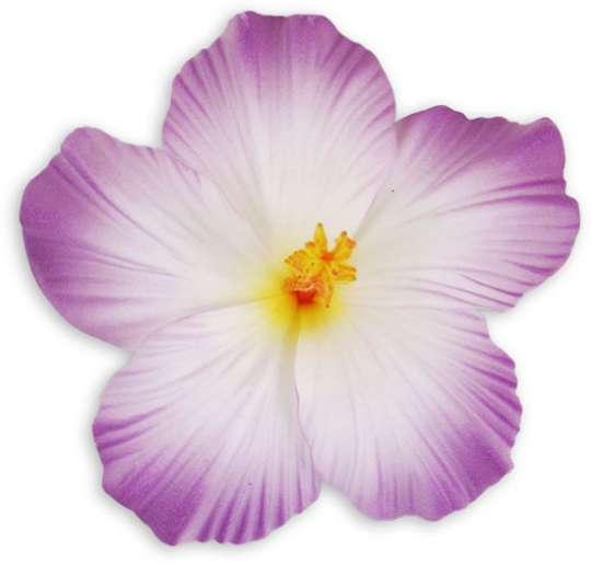 Large Hibiscus Flower Hair Clip White Purple Shaka Time Hawaii