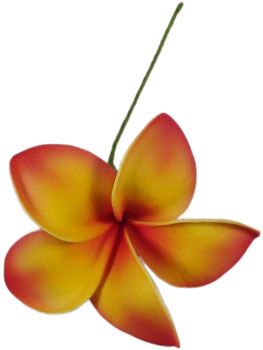 Orange Plumeria Pick - Hawaiian Aloha Shirts - Shaka Time Hawaiian Shirt Co. :  foam flower accessori hawaiian