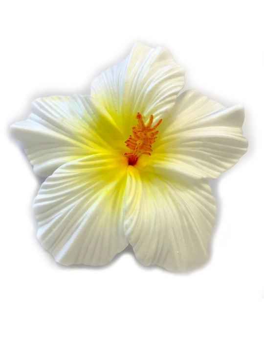 Large Hibiscus Flower Hair Clip Natural Color Shaka Time Hawaii