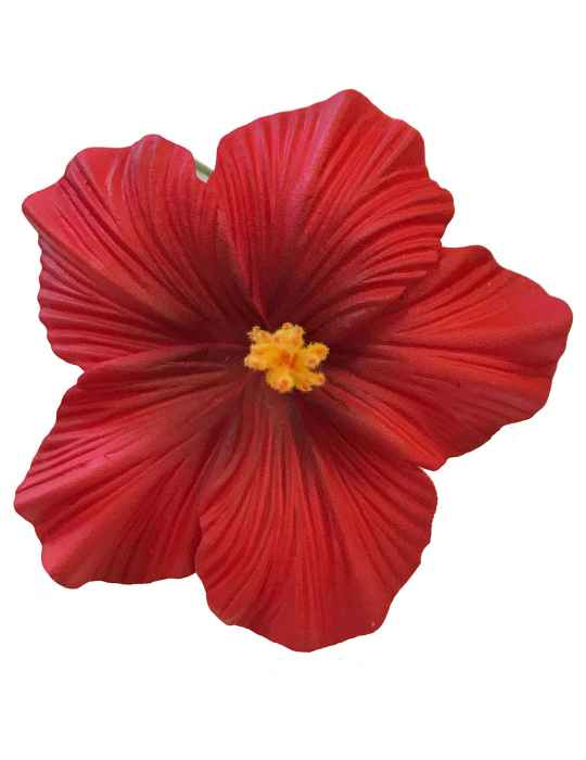 Large Hibiscus Flower Hair Clip Red Shaka Time Hawaii Clothing Store