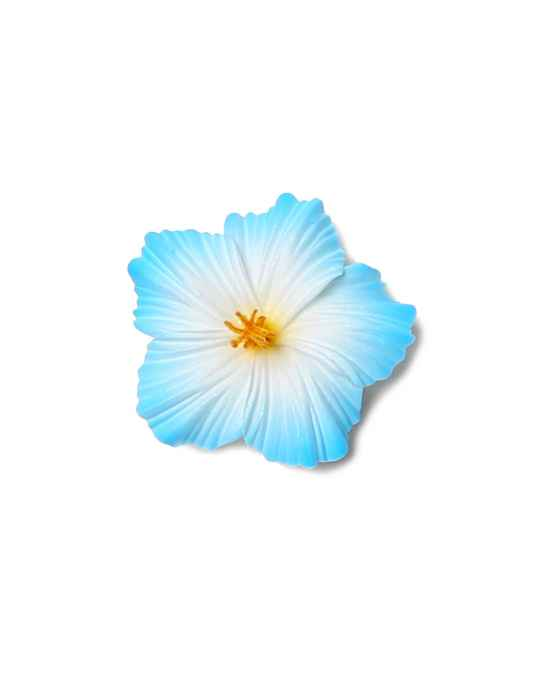 0b28c204 Small Hibiscus White Blue Flower Hair Clip: Shaka Time Hawaii Clothing Store